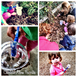 Getting Buggy – A Party or Playdate Idea