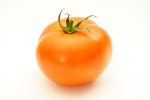 hb tomato
