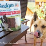 pet safety nudges treats