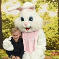 Free Easter Bunny Pictures with Portrait Innovations