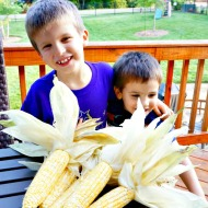 Sweet Corn Recipes for Summer