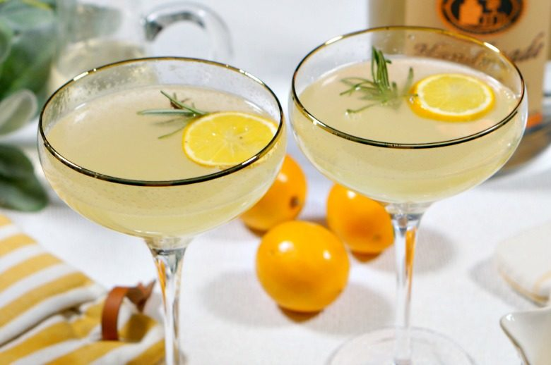 """Our Meyer Lemon Vodka Fizz is the perfect way to toast to the end of winter! Sweet and floral, with the perfect amount of """"bite"""" you may just want the cold weather to hang on just a tad longer so you can warm up from the inside out with this cocktail."""